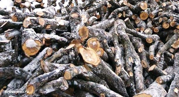 яблоневые дрова
