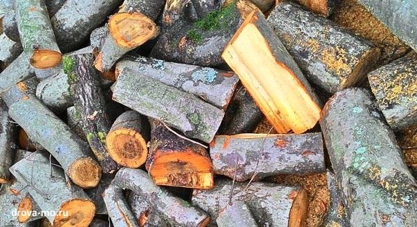 дрова из царской ольхи в МО