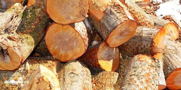 дрова чурбаками для предприятий